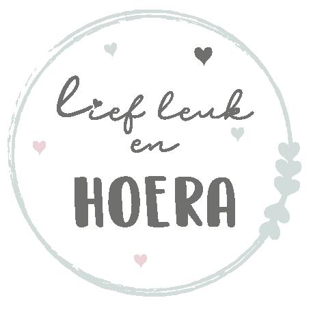 Logo Lief leuk en Hoera